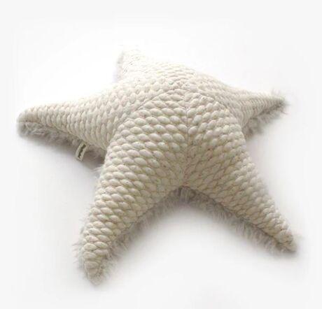 Small Albino SeaStar
