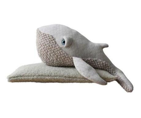 Small Albino Whale